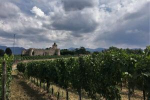 Castello di Passirano sullo sfondo di una vigna in Franciacorta